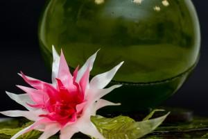 Große Zuckerkugel mit Blüte